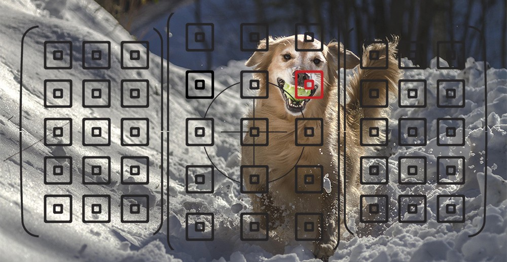 فوکوس خودکار متقاطع 45 نقطه ای و سیستم Dual Pixel CMOS AF دوربین Canon EOS 80D